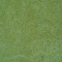 Линолеум натуральный FORBO Marmoleum Real 3223 (2х32 м)