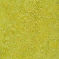 Линолеум натуральный FORBO Marmoleum Real 3224 (2,5мм, шир. 2х32 м)
