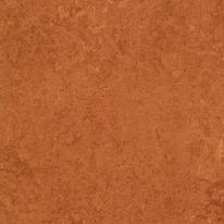 Линолеум натуральный FORBO Marmoleum Real 2767 (2х32 м)