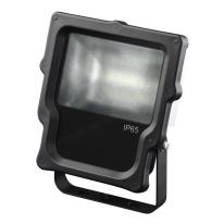 Прожектор светодиодный 10Вт ЭРА 2700K